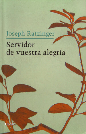 SERVIDOR DE VUESTRA ALEGRÍA